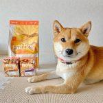 Лучший корм для собак крупных пород